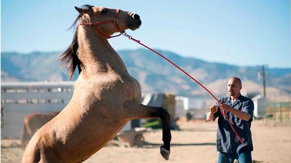 Splitscreen-review Image de Nevada de Laure de Clermont-Tonnerre